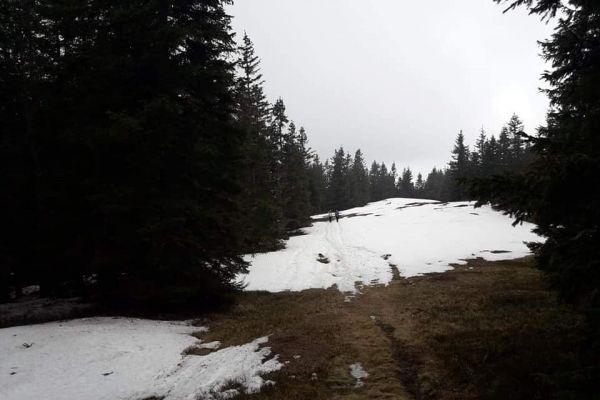 rni-vrh-pohorje-2019-014C9C3B6EE-17E3-0DF2-E945-55FFC1B22C96.jpg