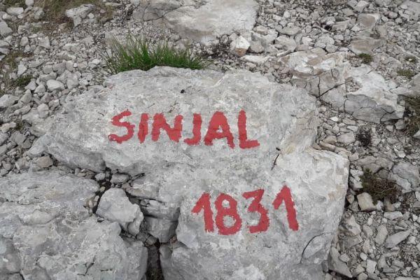 sinjal-2019-0096981D170-0776-3436-84F4-3FAA26B231CC.jpg